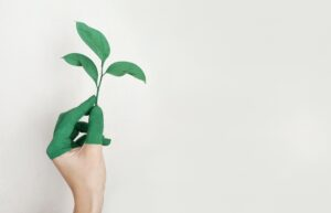 retail sustainability